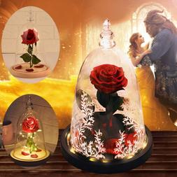 Beauty And The Beast Eternal Rose LED Light Glass Dome Home