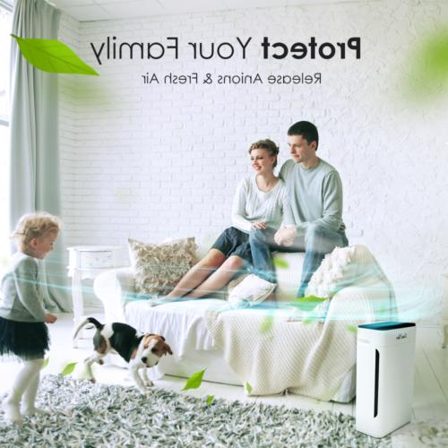 Air Purifier HEPA Filter Cleaner for Home Allergies