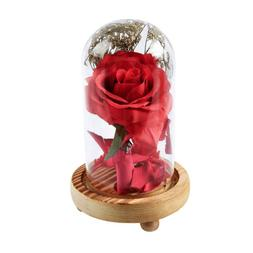 Red Rose Flower Glass Dome for Home Bedroom Desk Table Decor